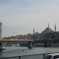 The neighboring Galata Bridge.