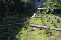There are lots of cemeteries in this part of the city. Beautiful and old.