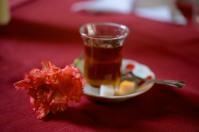 """Lots of cafes had staff waiting in the street to win your patronage with menus and Turkish charm. I smiled and passed most of them by, but one gentleman managed to pull me into a conversation. He said I was so nice (most people never spoke to him, he said) that he insisted I sit down for some apple tea. """"How much?"""" I asked. """"For nothing!"""" he insisted. """"Please do not say no."""" The cups kept coming, and he also gave me a carnation for my """"kindness""""."""