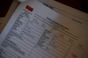 The printed version of the online form.