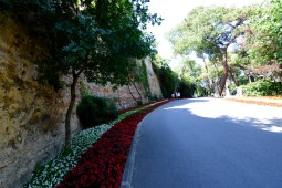 Walking along the walls.