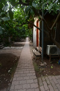 Path to my bungalow.